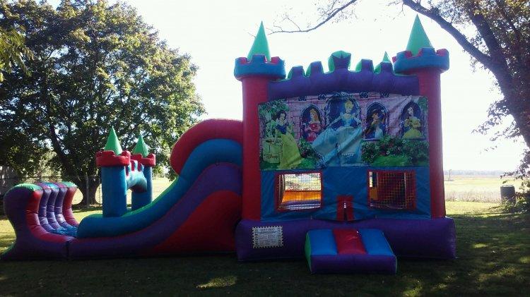 Disney Princess colorful castle combo(wet)